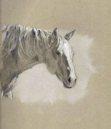 """""""Warm Sun"""" 5 inches x 7 inches pencil drawing on toned art paper. FOR SALE $50 Please contact me for details on how to purchase"""
