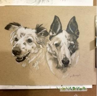 Two dogs portrait
